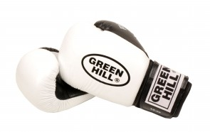 Green Hill Boxhandschuh Fighter
